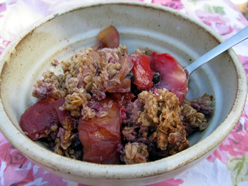 Nectarine Berry Crisp - Nourish the Budding Lotus